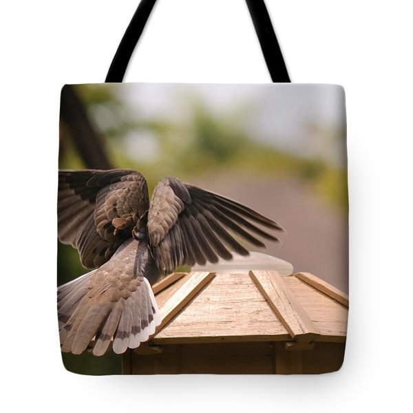 The View From My Window - Mourning Dove Tote Bag