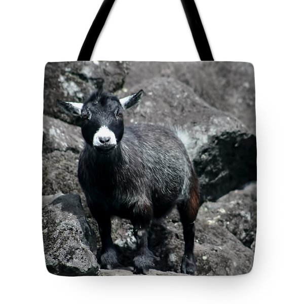 This Is My Rock Tote Bag