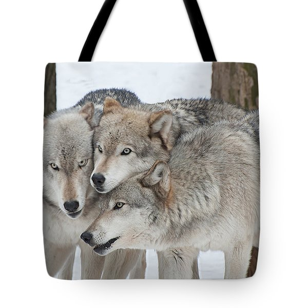 Three Wolves Are A Crowd Tote Bag