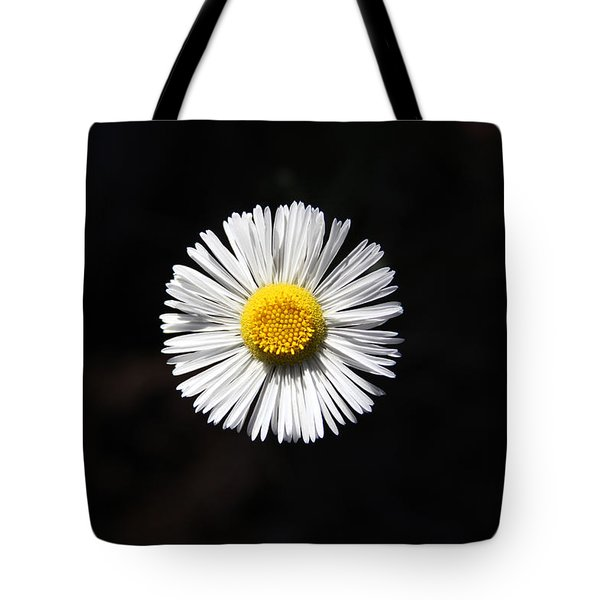 Tidy Fleabane Tote Bag by Charles Ables