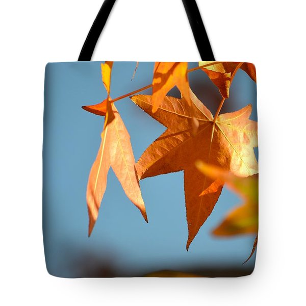 Tote Bag featuring the photograph  It Feels Like Fall by Alex King