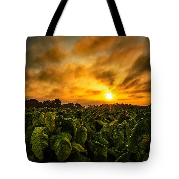 Tobacco Sunrise  Tote Bag