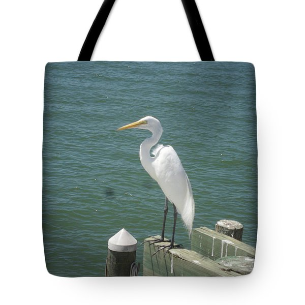 Tranquility Tote Bag by Val Oconnor