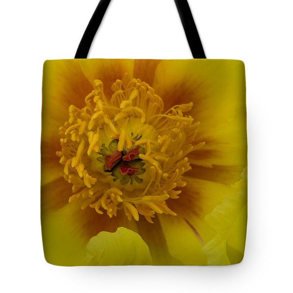 Tote Bag featuring the photograph Tree Peony by Cathy Donohoue