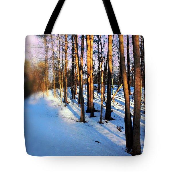 Trees Photography Tote Bag by Mark Ashkenazi
