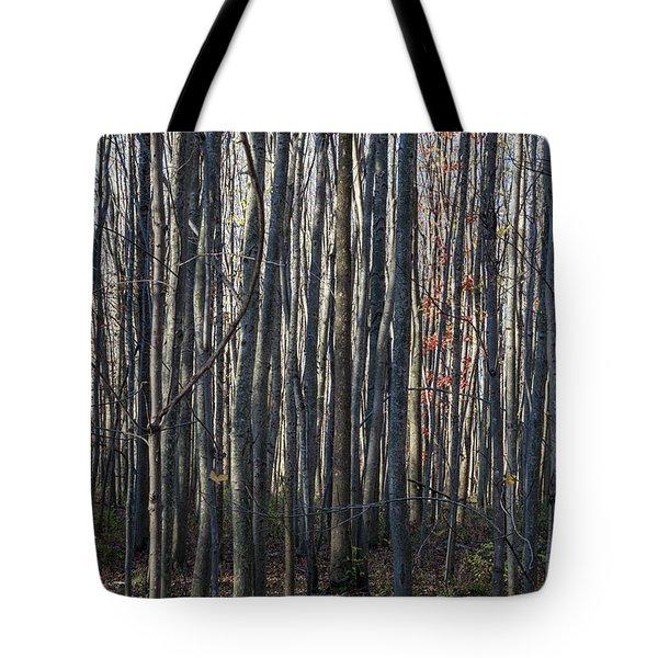 Treez Tote Bag