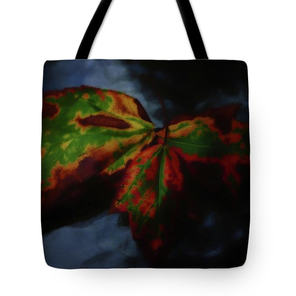 Tote Bag featuring the photograph Trio by Beth Akerman