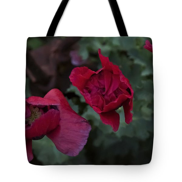 Twilight Poppies Tote Bag by Ellery Russell