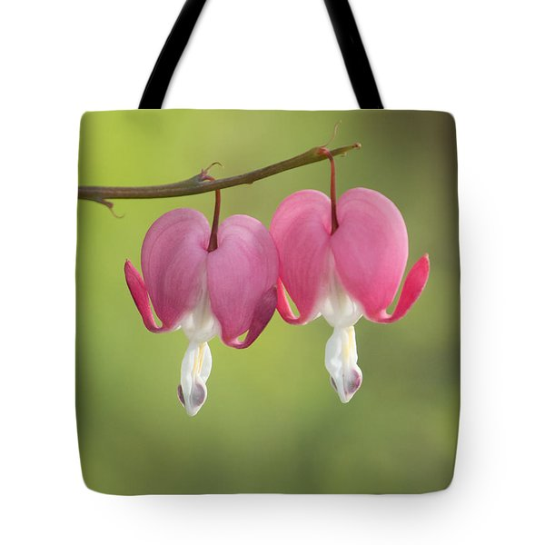 Tote Bag featuring the photograph Two Hearts by Angie Vogel