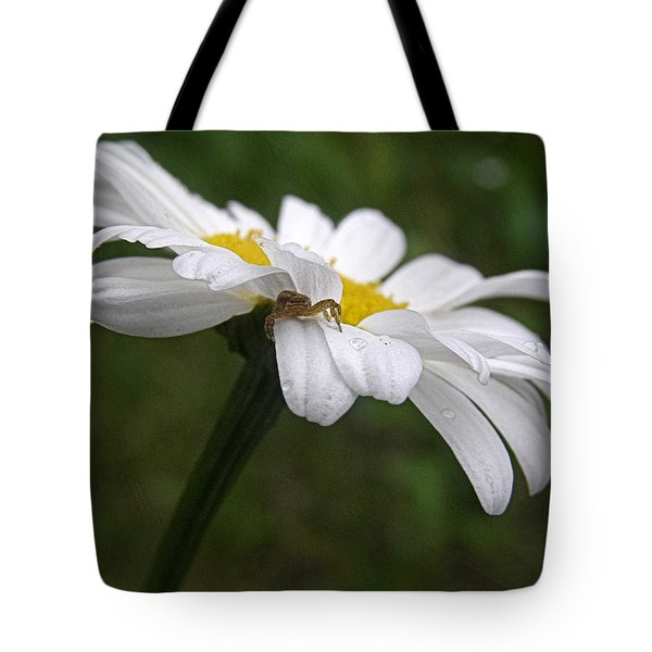 Tote Bag featuring the photograph Umbrella For A Spider by Angie Rea