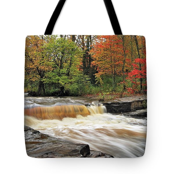 Unnamed Falls Tote Bag by Michael Peychich