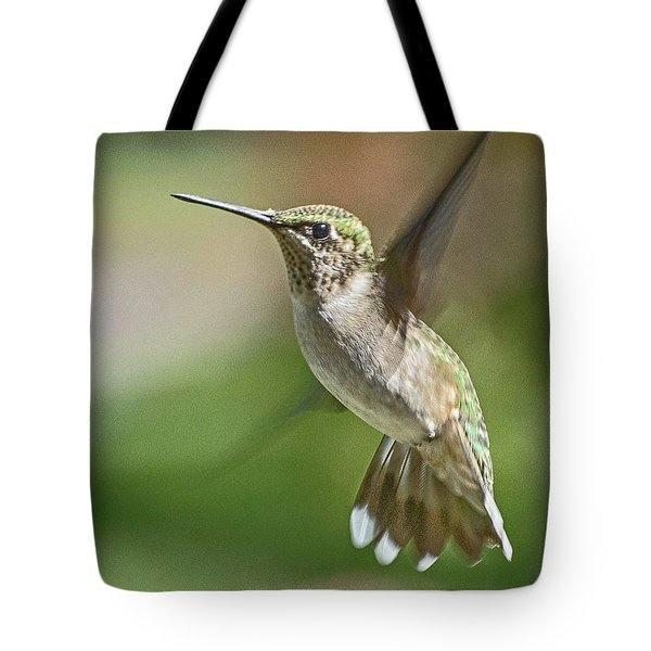 Untitled Hum_bird_five Tote Bag