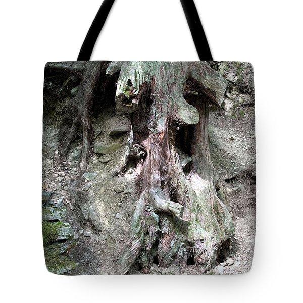 Unusual Tree Root Tote Bag