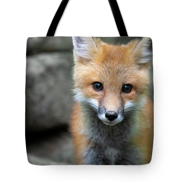 Tote Bag featuring the photograph Up Close by Dan Friend