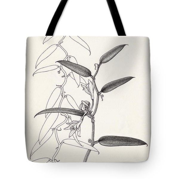 Tote Bag featuring the drawing Vanilla by Judith Kunzle