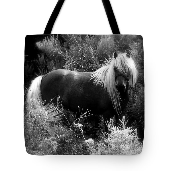 Vanity Tote Bag by Elfriede Fulda