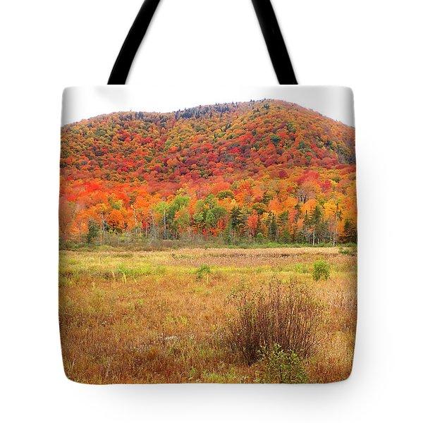 Vermont Foliage 1 Tote Bag
