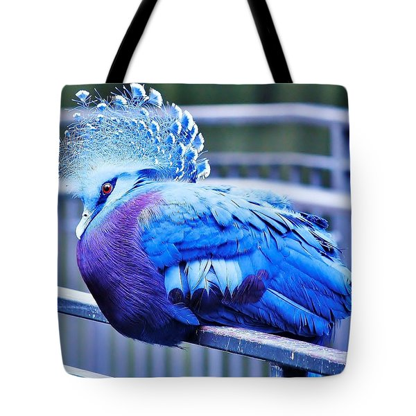 Victoria Crowned Pigeon Tote Bag