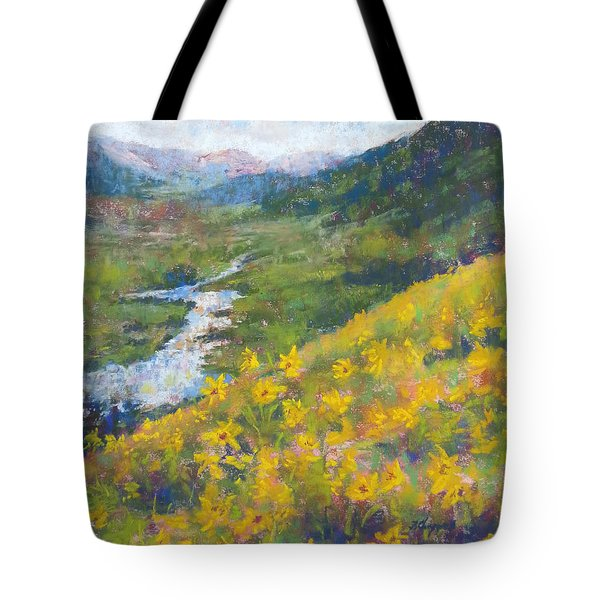 View From Baxters Gulch Tote Bag