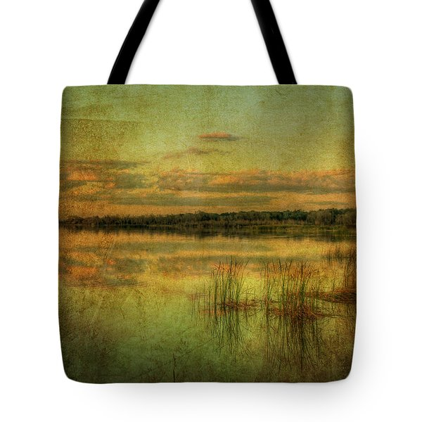 Vintage Florida Tote Bag