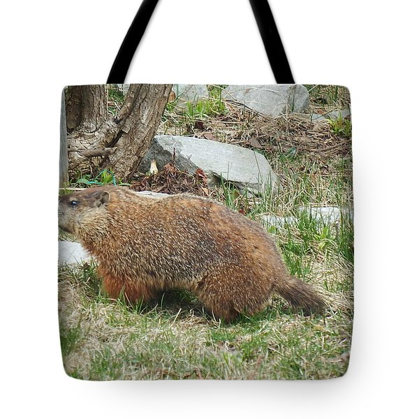 Tote Bag featuring the photograph Visitor  by Vicky Tarcau