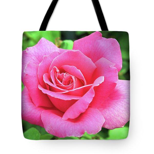 Vivid Pink Tote Bag by Ellen Tully