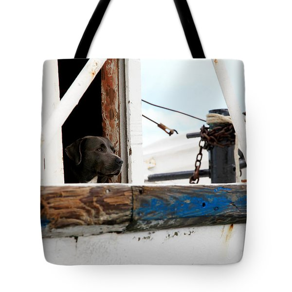 Waiting On His Best Friend Tote Bag by Toni Hopper