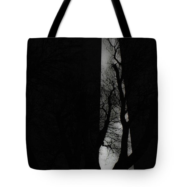 Tote Bag featuring the photograph Washington Monument by Angela DeFrias