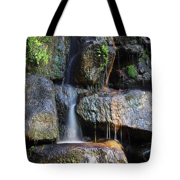 Waterfall Tote Bag by Carlos Caetano