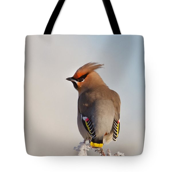 Waxwing Tote Bag