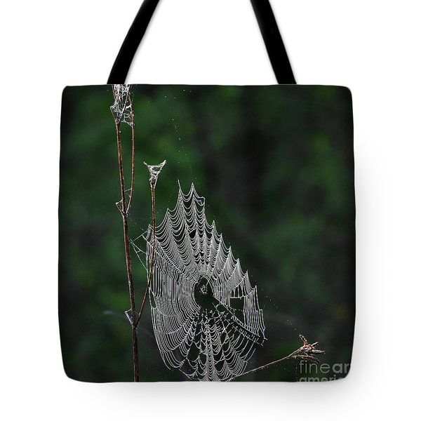 Tote Bag featuring the photograph Webs We Weave by Skip Willits