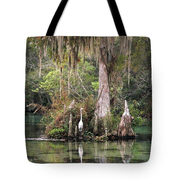 Weeki Wachee River Tote Bag by Steven Sparks