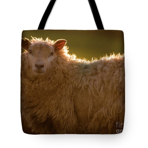 Welsh Lamb In Sunny Sauce Tote Bag by Angel  Tarantella
