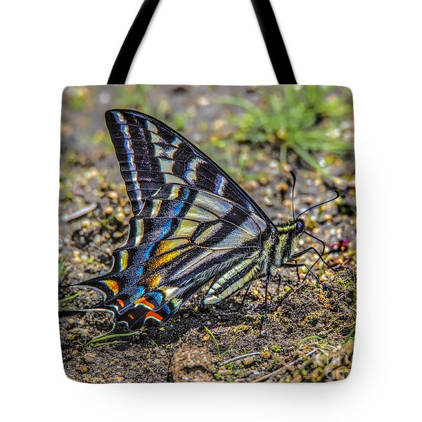 Tote Bag featuring the photograph Western Tiger Swallowtail by Mitch Shindelbower