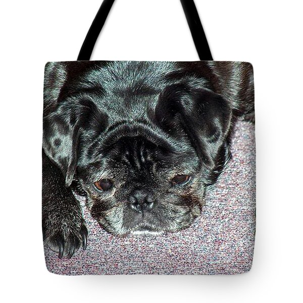 What A Day Tote Bag by Lisa Stanley