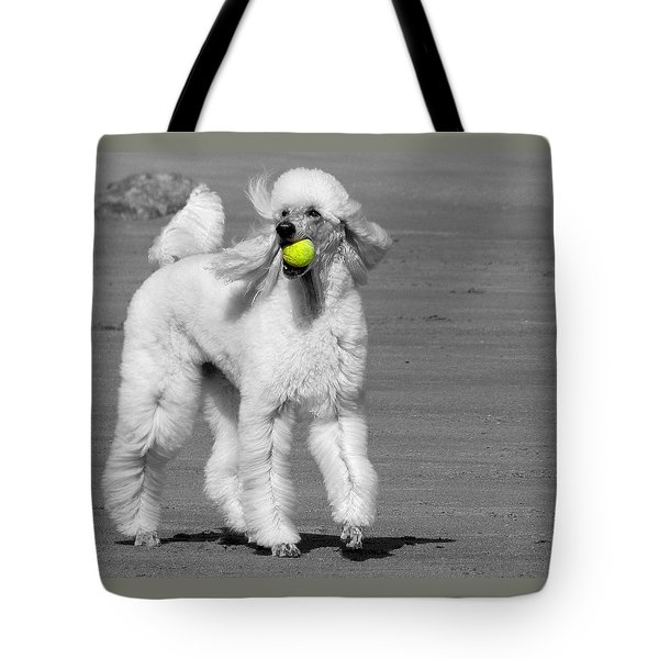 Pedicured Pup Hits The Beach Tote Bag