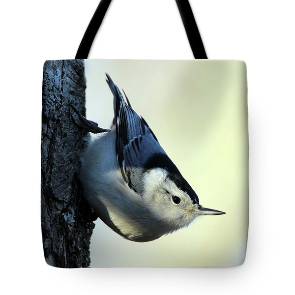 White Breasted Nuthatch Wading River New York Tote Bag