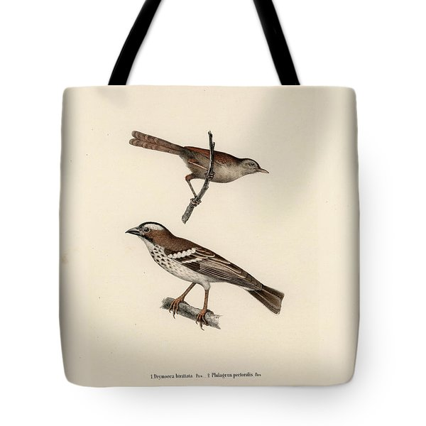 White-browed Sparrow-weaver And Grass Or Bush Warbler Tote Bag