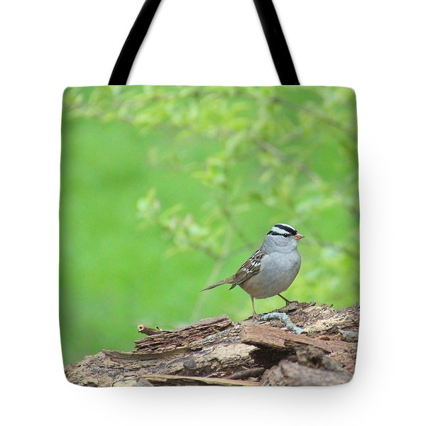 White Crowned Sparrow Tote Bag by Rosanne Jordan