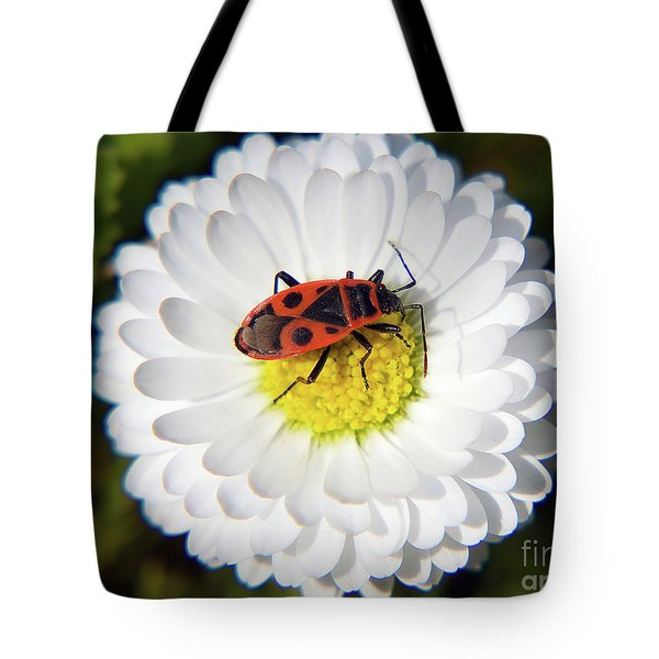 Tote Bag featuring the photograph White Flower by Elvira Ladocki