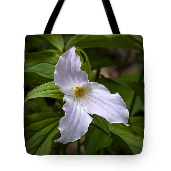White Trillium Tote Bag by Tyson and Kathy Smith