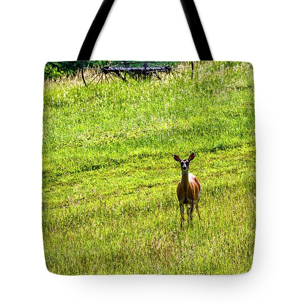 Tote Bag featuring the photograph Whitetail Deer And Hay Rake by Thomas R Fletcher