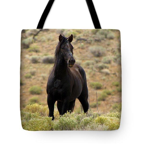 Wild Black Mustang Stallion Tote Bag