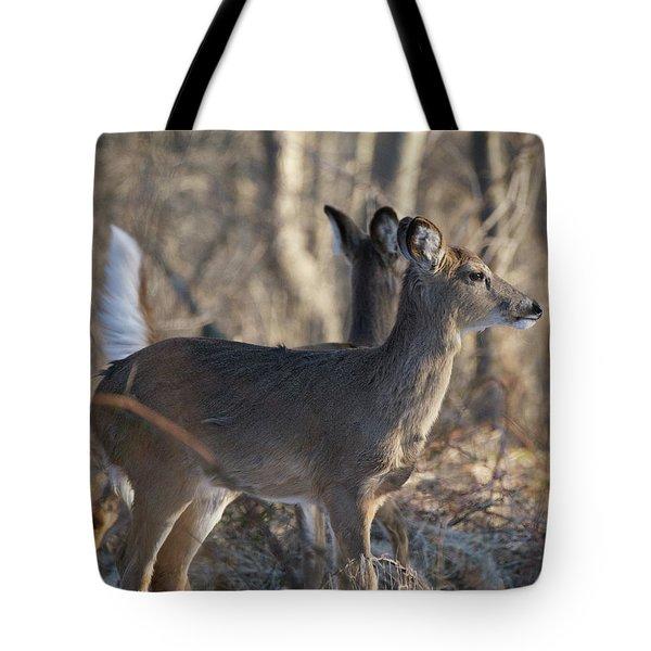 Wild Deer Tote Bag