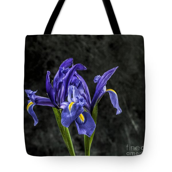 Tote Bag featuring the photograph Wild Iris by Shirley Mangini