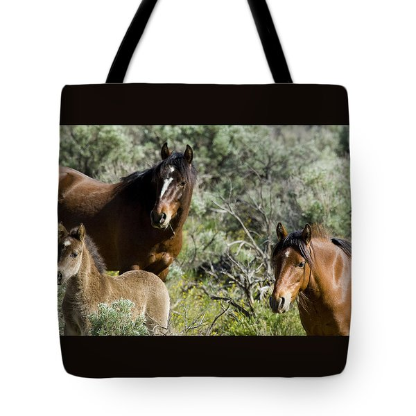 Wild Mustang Herd Tote Bag