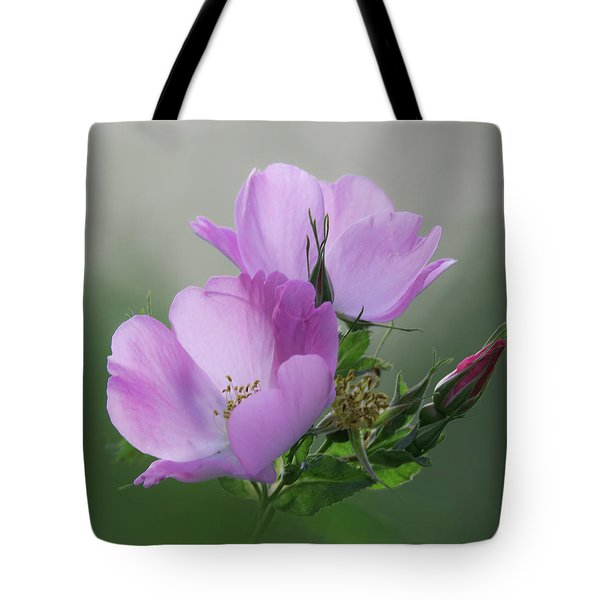 Wild Roses Tote Bag by Angie Vogel