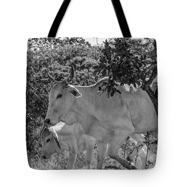 Wildlife Tote Bag by Daniel Precht