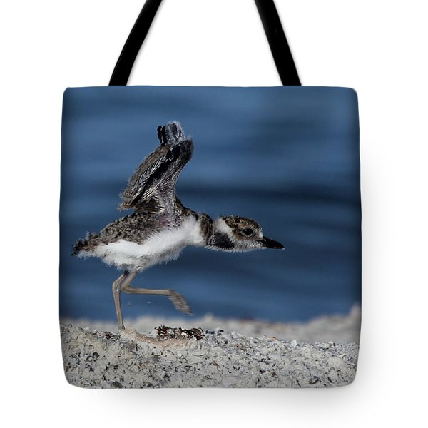 Wilson's Plover Tote Bag
