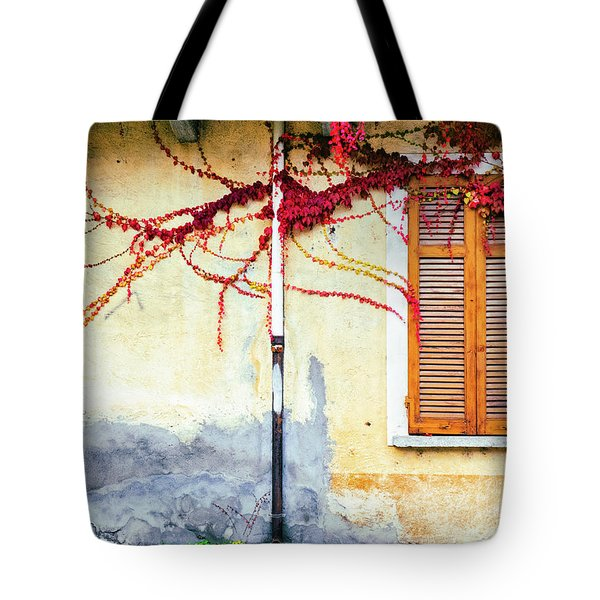 Tote Bag featuring the photograph Window And Red Vine by Silvia Ganora